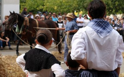 Milers de veïns i visitants gaudeixen d'una vibrant segona edició d'«Orígens»
